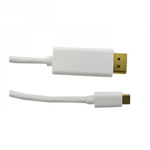 Kabel DisplayPort Alternate mode | USB 3.1 typC męski / DisplayPort męski | 4Kx2K | 1m