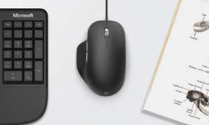 Mysz MS Ergonomic Mouse USB Black RJG-00003